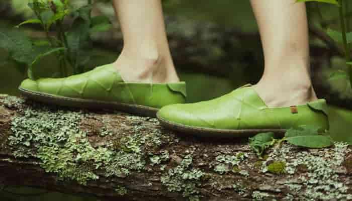 tipos de zapatos sostenibles