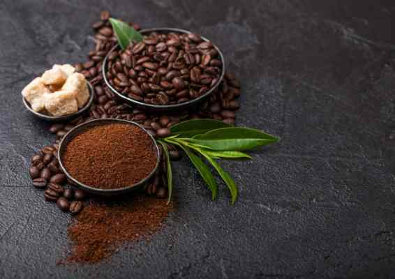 tipos de café organico