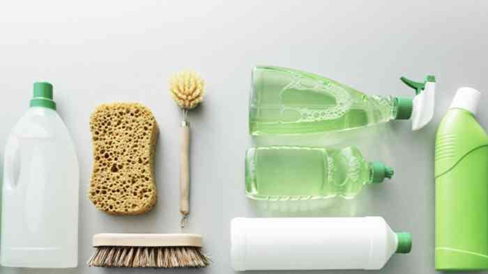 tipos de detergentes ecologicos