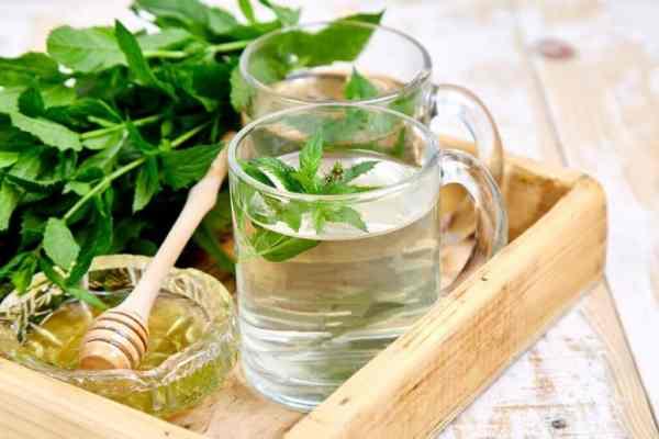hierbas para desinflamar el vientre